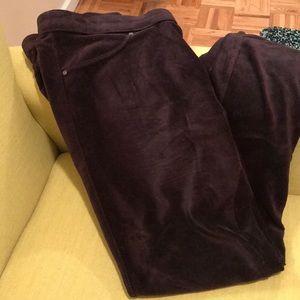 Gorgeous velvet comfortable pants sz1x